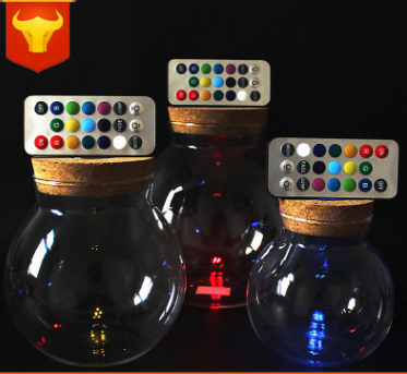 厂家批发遥控小夜灯 软木塞带灯玻璃瓶 永生花玻璃花瓶微景观花瓶