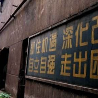 """略论机械制造业供给侧结构性改革中的""""国进民退""""现象"""