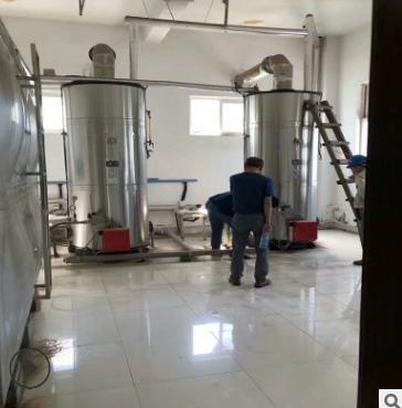 山东菏泽直销烘干粉皮豆制品加工专用液化气蒸汽发生器 燃油锅炉