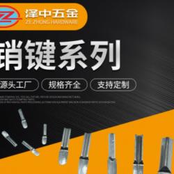【泽中】插销螺套 销键 销子 高硬度 优质不锈钢材质 非标销键